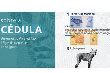 Cédula de R$ 200 entra em circulação hoje