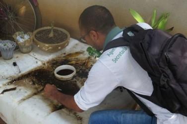 Lucas do Rio Verde: Número alto de casos de dengue preocupa Vigilância Ambiental