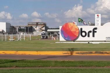 BRF de Lucas do Rio Verde renova certificações da linha Sadia Bio