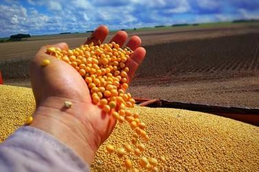 Ferramenta irá mostrar cumprimento dos contratos de venda antecipada de soja
