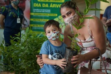 Luverdenses em atendimento no Paço Municipal recebem mudas no Dia da Árvore