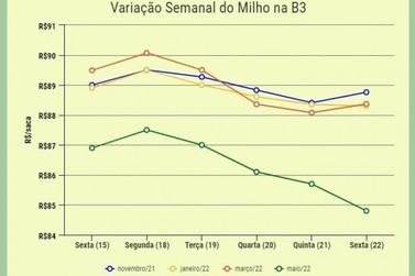 Milho fecha semana de desvalorizações na Bolsa Brasileira