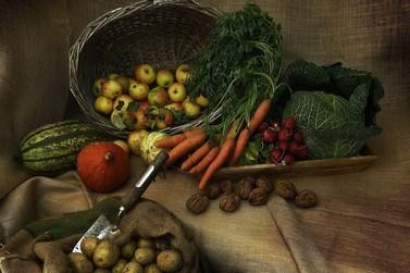 2° Encontro da Agricultura Familiar