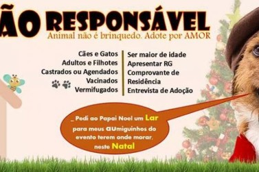 IDDA promove neste sábado evento de adoção de cães e gatos