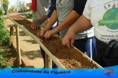 Comunidade da Figueira retoma suas atividades em 2019