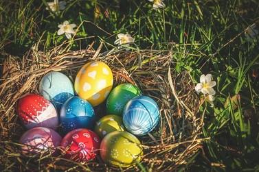 Qual a relação do coelhinho e os ovos de chocolate na páscoa?