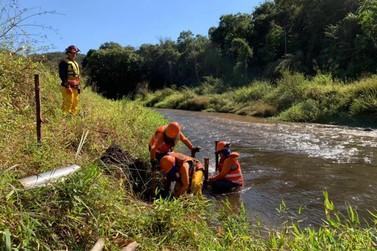 Projeto da Fundação Renova revitaliza o rio Gualaxo do Norte