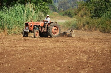 Aração de terras em propriedades agrícolas de Mariana começa nesta quarta-feira