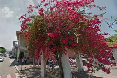 Prefeitura entrega cadernos pedagógicos nesta segunda-feira (31)