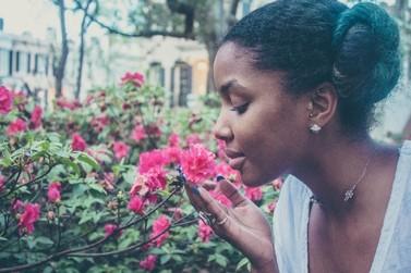 A estação das flores traz consigo a esperança