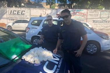 Irmãos de 16 e 18 são detidos com 1.400 pinos de cocaína em Itapira