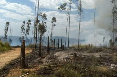 Incêndio destrói área verde em fazenda de Itapira