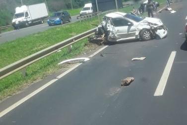 Cão pode ter causado acidente envolvendo 3 veículos