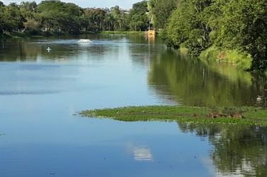 Moradores reclamam de falta de aeradores no lago; Prefeitura contesta