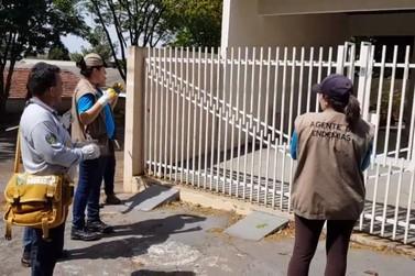Índice de Infestação da dengue apresenta queda em Douradina