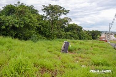 Umuarama está em área de risco de febre amarela