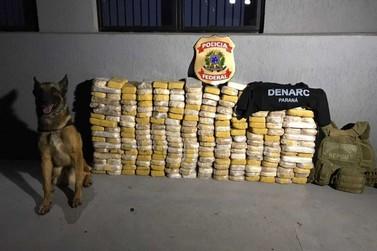Polícia apreende 230 kg de crack em tanque de combustível de caminhão