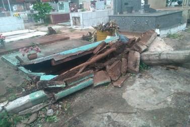 Vendaval derruba árvores e abre túmulo no cemitério de Paranavaí