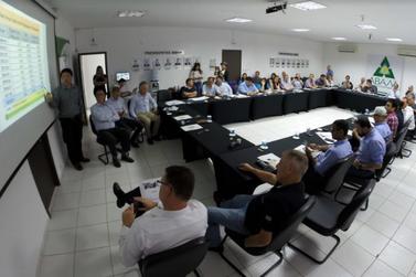 Fécula de mandioca: empresários da Tailândia buscam tecnologia brasileira