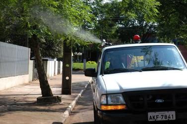 Paraná confirma duas mortes por dengue