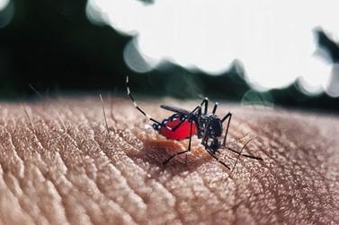 Homem de 61 anos morre de dengue em Loanda
