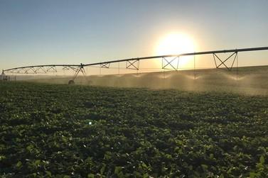 Total Hidro apresenta tecnologia de irrigação inovadora em evento em Astorga
