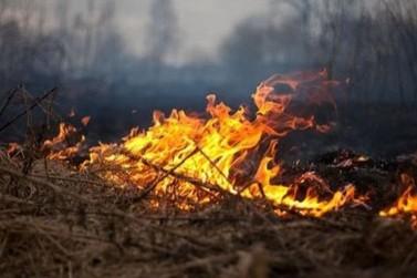 Adolescente é apreendido após colocar fogo em mata ciliar no Jardim Morumbi