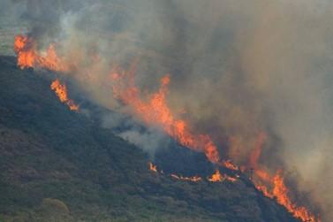 Bolsonaro estuda enviar Exército para combater queimadas na Amazônia
