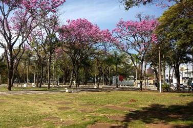 Paranavaí comemora Dia do Artista com apresentações na Praça dos Pioneiros