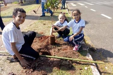 Alunos da Escola Santos Dumont plantam 40 árvores ao redor do Noroestão