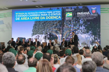 Paraná suspende vacinação contra a febre aftosa