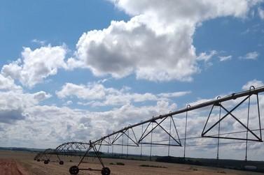 Associação dos Irrigantes do Noroeste   do Paraná será criada nesta sexta-feira