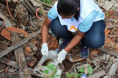 Trinta caminhões de lixo e entulho são retirados em mutirão contra a dengue