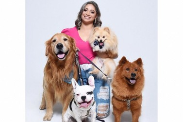 Viagem de férias: hotel para cães é opção para deixar os filhos de quatro patas