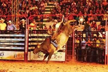 Rodeio em touros da ExpoParanavaí começa nesta quinta com entrada gratuita