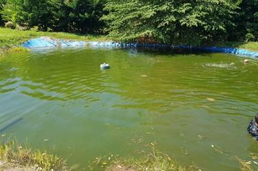 Criança de 5 anos morre afogada em tanque de peixes em Santa Isabel do Ivaí