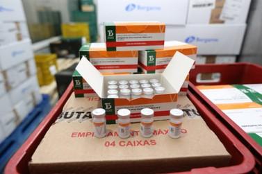 Paraná recebe novas doses da Coronavac e inicia logística para distribuição