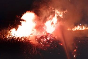 Incêndio em vegetação quase atinge Hospital Noroeste no jardim Morumbi