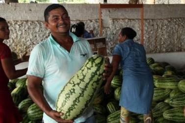 Semagric cadastra produtores para programa de aquisição de alimentos
