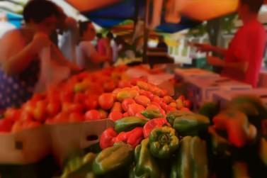 Feira de Agricultura Familiar do TJRO será na próxima quinta-feira, 27