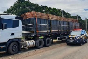 PRF realiza flagrante de transporte ilegal de madeira
