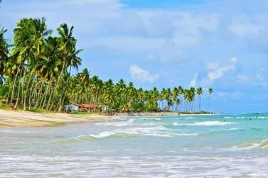 Cursos de turismo online: prepare-se para o futuro sem sair de casa