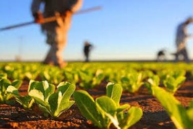 Débitos de agricultores familiares terão desconto na liquidação