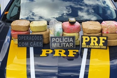 PRF intercepta carregamento de cocaína avaliado em cerca R$ 800 mil, em RO
