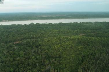 PF deflagra operação para combater grilagem em terras indígenas em Rondônia