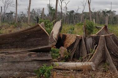 Mega operação cumpre 15 mandados de prisão em cinco cidades de Rondônia