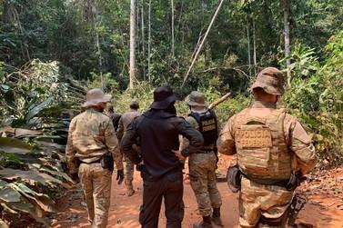 Operação da PF e Ibama combate exploração de madeira em Terra Indígena