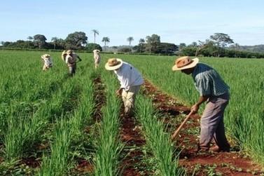 Senado aprova auxílio de R$ 2,5 mil por família para agricultores familiares