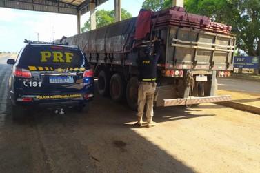 PRF apreende duas cargas de madeira transportadas de forma irregular na BR-364
