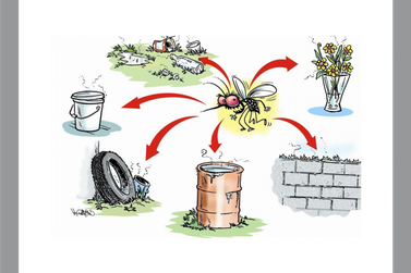 Novo caso de dengue contraído na cidade é notificado